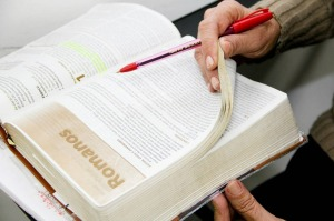 Reading regularly the Bible and studying it thoroughly - Regelmatig de Bijbel lezend en zorgvuldig bestuderend